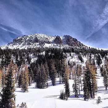 11,000 Feet by Ben Tesler