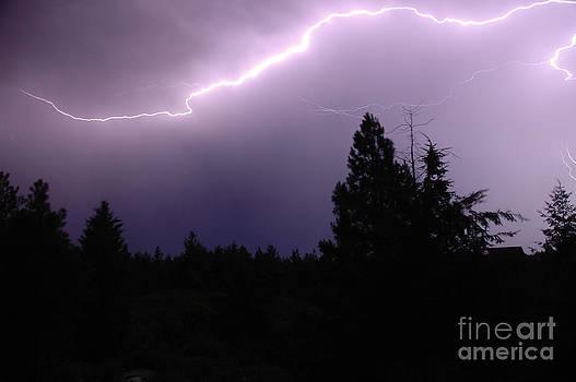 NightVisions - 1108P Lightning