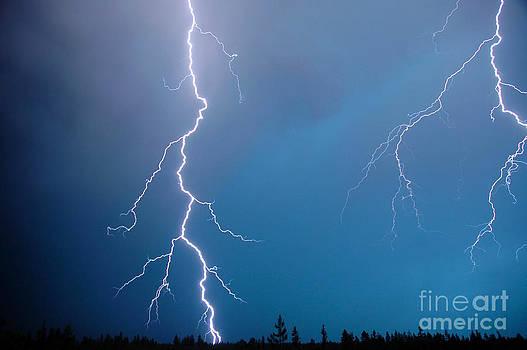 NightVisions - 1110P Lightning