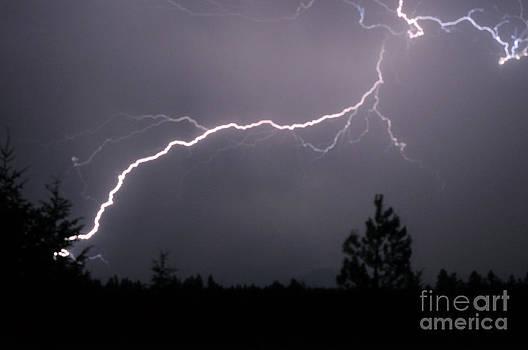 NightVisions - 1114P Lightning