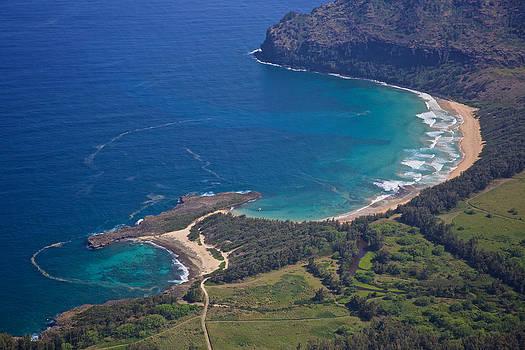 Steven Lapkin - Kauai Shoreline