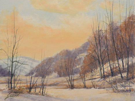 130111-68 Warm Winter Day by Kenneth Shanika