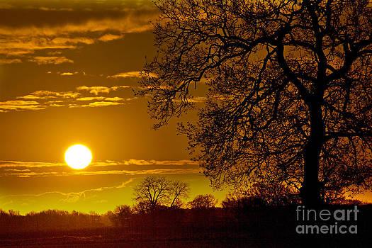 Darren Burroughs - Sunrise