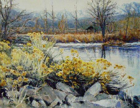 Winter Garden by Chisho Maas