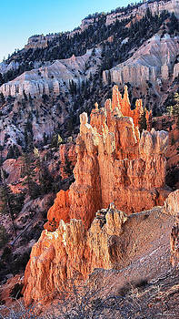 Bryce Canyon by SM Shahrokni