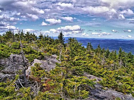 Naturally NH - 1707 Mount Kearsarge Overlook