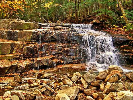 Naturally NH - 1711 Falling Waters