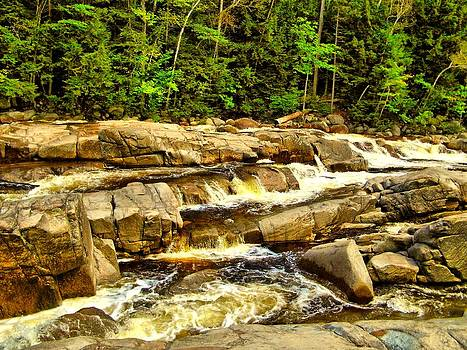 Naturally NH - 1831 Lower Falls