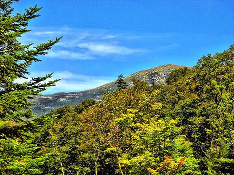 Naturally NH - 1842 Mount Lafayette Summit