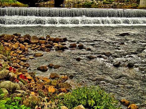 Naturally NH - 1874 Bristol Falls