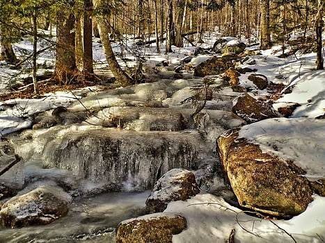 1932 Winter Cascade by Naturally NH