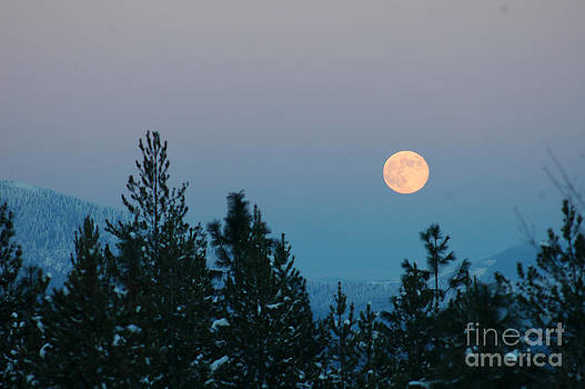 NightVisions - 747P Moon