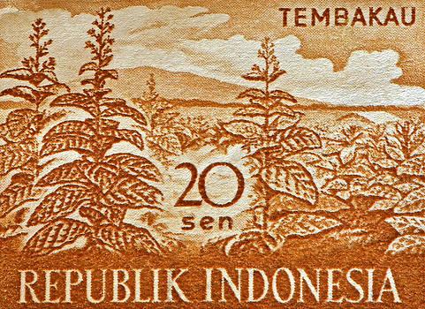 Bill Owen - 1960 Indonesian Tobacco Plant Stamp