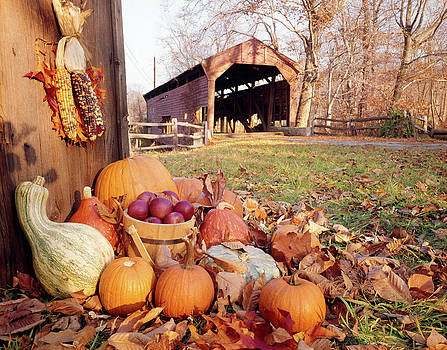 1960s Autumn Scenic Of Covered Bridge by Vintage Images