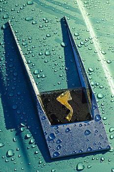 Jill Reger - 1963 Studebaker Avanti Hood Ornament