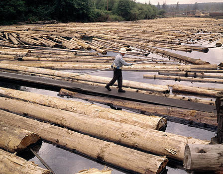 1970s Lumber Yard Mill Pond Worker by Vintage Images