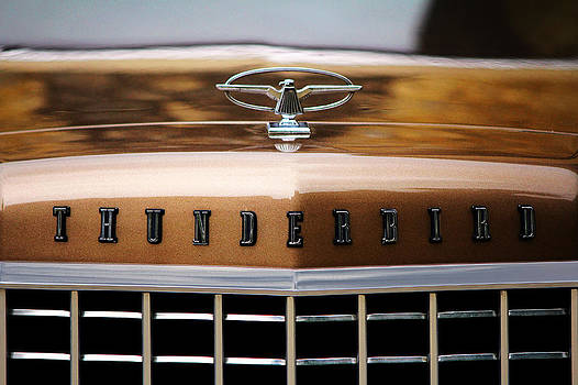 1974 Ford Thunderbird by Cedric Darrigrand