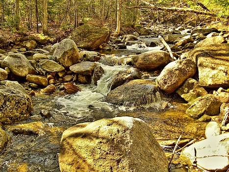 1975 Fowler River by Naturally NH