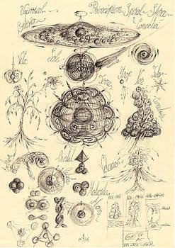 1.Universality of macro-meso-microcosmic  by Gabriel Kelemen