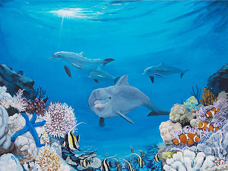 A Visit to the Reef by Jeremy Reed