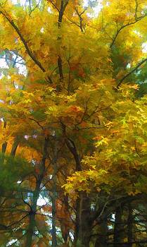 Autumn Leaves by Peggy Gabrielson