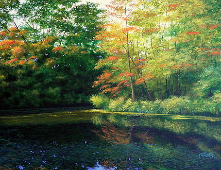 Autumn sunset by Erno Saller