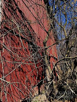 Barn by Joseph Yarbrough