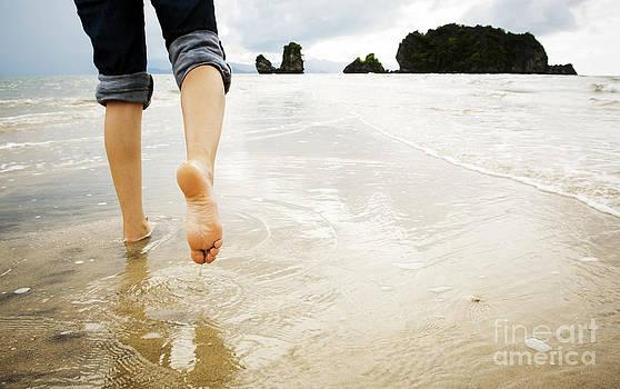 Tim Hester - Beach Walking