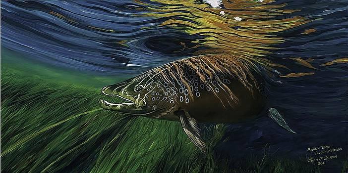 Big Brown Trout by Juan Jose Serra