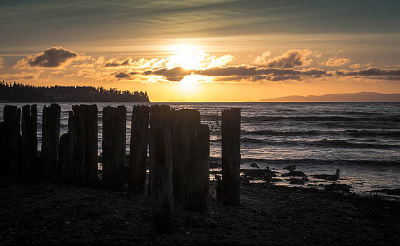 Birch Bay Sunset by Blanca Braun