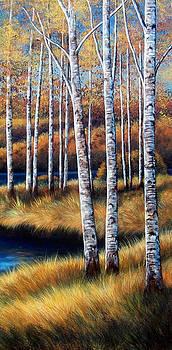 Birch Trees by Glenda Stevens