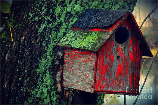 Sophie Vigneault - Birdhouse