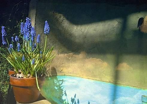 Marysue Ryan - Blue Hyacinth flower photograph