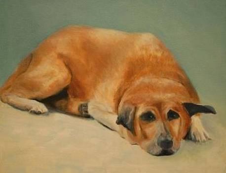 Bobby by Joan Glinert
