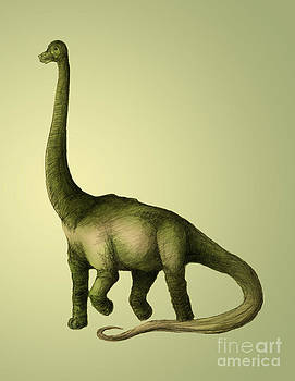 Spencer Sutton - Brachiosaurus