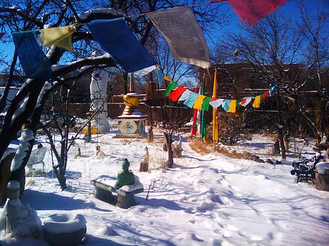 Buddha Garden by Seay Harshaw Delgado