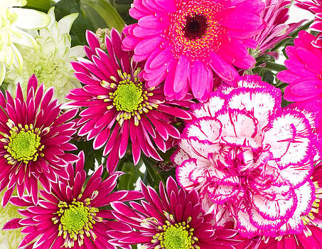 Fizzy Image - bunch of various pink flowers cropped