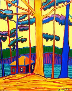 Camp Massapoag by Debra Bretton Robinson