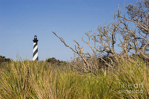 Jill Lang - Cape Hatteras Lighthouse