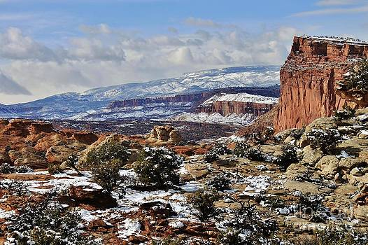 Capitol Reef by Bernard MICHEL