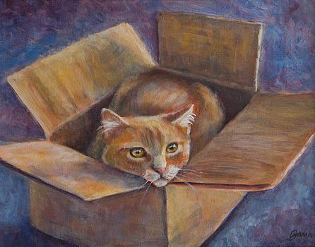 Cat in the Box by Jana Baker