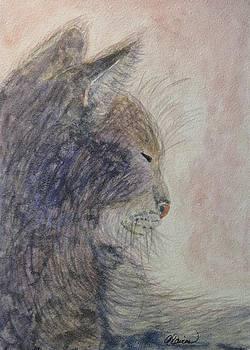 Angela Davies - Cat Nap