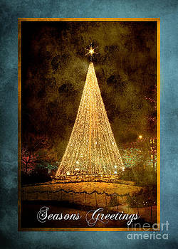 Cindy Singleton - Christmas Tree in the City