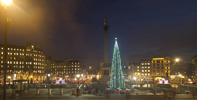 David French - Christmas  Tree Trafalgar Square