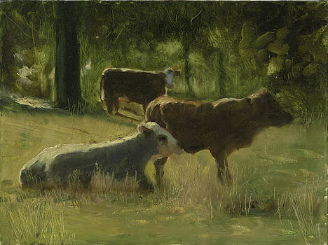Cows In The Sun by John Reynolds