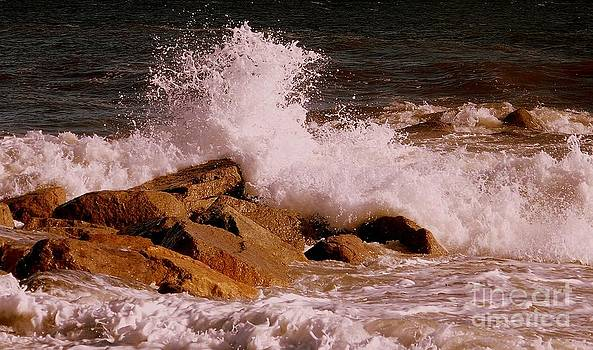 Crashing Surf On Plum Island by Eunice Miller