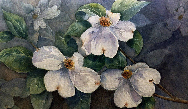 Dogwood by Cynthia Roudebush