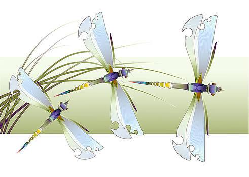 Nato  Gomes - Dragonflies
