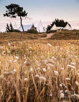 Dream Camp by David Hanlon