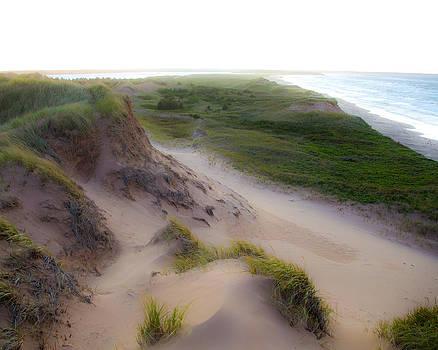 Dune by Allan MacDonald
